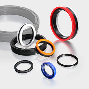 Piston Seals (Double Acting)